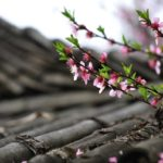 外壁塗装・屋根塗装の時期|塗装にベストな季節はいつ?