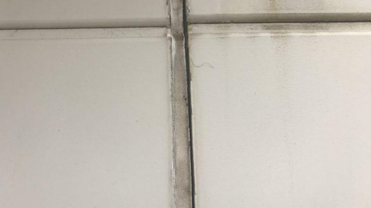外壁塗装のプロが教える|コーキング(シーリング)の基礎知識とメンテナンス方法